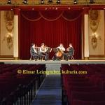 Schloss Esterhazy Festsaal DSCN1251