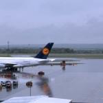 Und zum Grössenvergleich mal der A380 und ein AUA-FliegerFoto: © Elmar Leimgruber