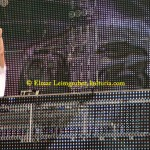 Armin Van Buuren IMG_4982