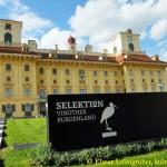 Schloss Esterhazy DSCN1394