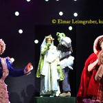 Shrek, Fiona, Rotkäppchen, Lebkuchenmann, Frau Holle IMG_0940